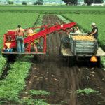 Get Farm Worker Visa of Canada: