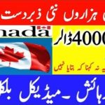 Jobs in Canada, Staff Recruitment For Security Guard in Canada, Apply Now