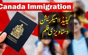 Canada landed 24,665 immigrants in January 2021— most since February 2020