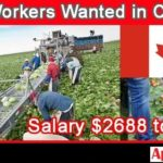 1000+ Agriculture Jobs in Canada | Agriculture & Farm Work