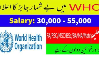 WHO Careers   World Health Organization