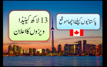 Find Best Immigration Lawyers Toronto Canada